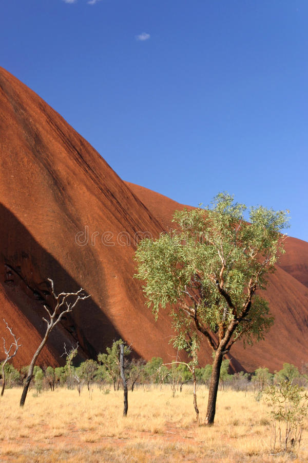 Grande roche rouge en Australie images stock