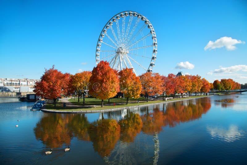 Grande roda de Montreal durante o outono imagem de stock
