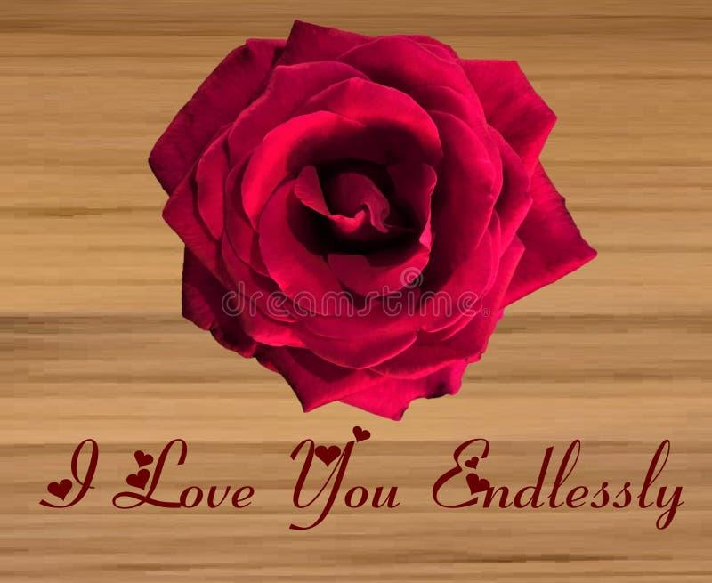 Grande Rose rouge simple sur un fond en bois illustration libre de droits
