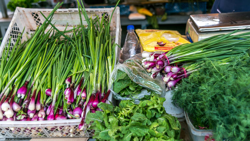 Grande sélection des légumes sur le marché, oignons, laitue, aneth photo libre de droits