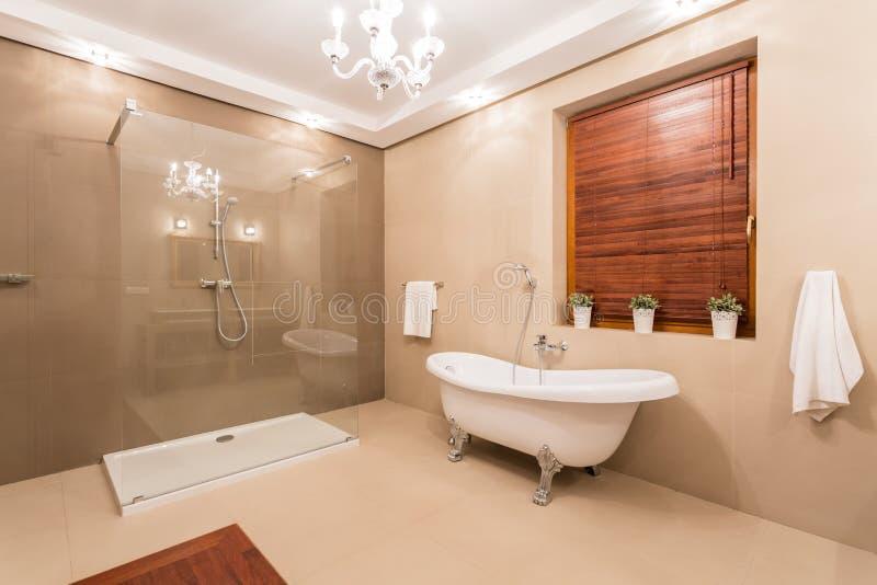 Grande salle de toilette photo libre de droits