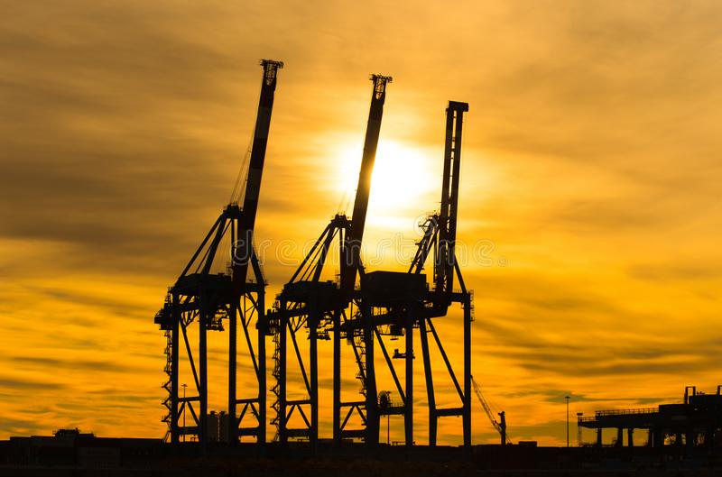 Grande silhouette de grues dans le port au coucher du soleil à Gênes, Italie photos libres de droits