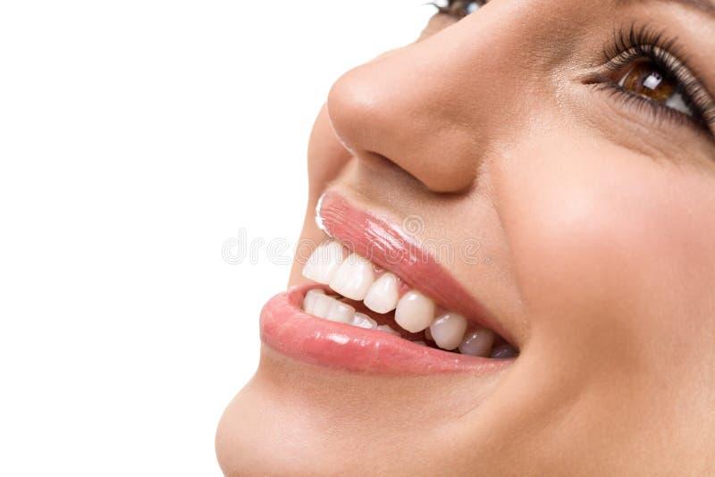 Grande sorriso com os dentes brancos retos imagem de stock