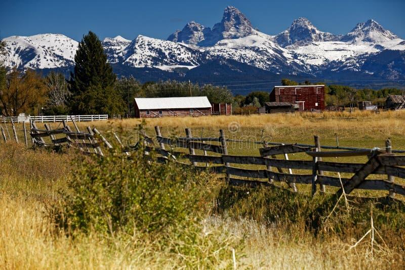 Grande sosta nazionale di Teton immagine stock
