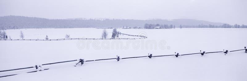 Grande sosta nazionale di Teton in inverno, immagini stock libere da diritti