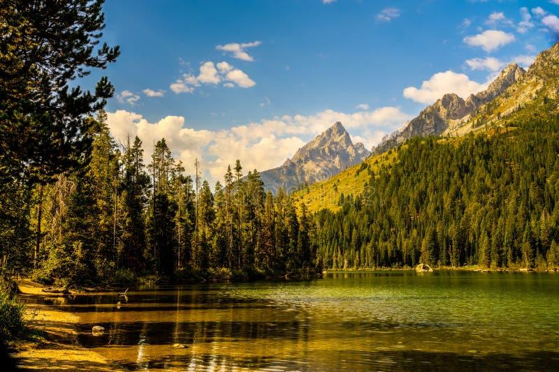 Grande sosta nazionale di Teton, Wyoming fotografia stock