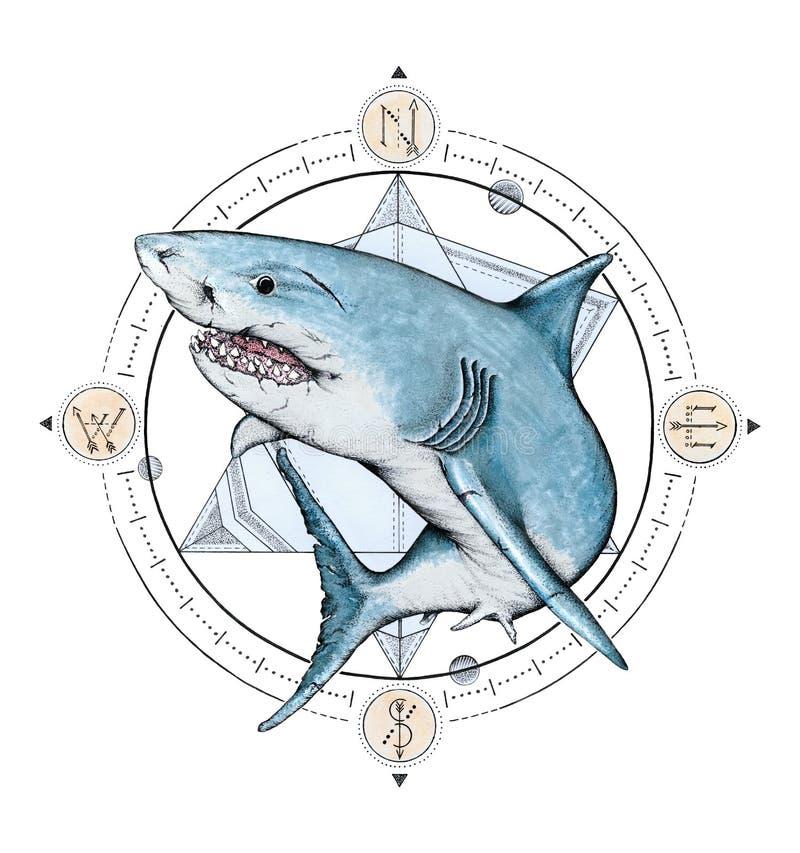 Grande squalo bianco con un fondo geometrico della bussola illustrazione vettoriale