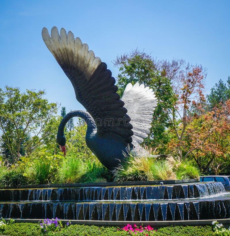 Grande statue de cygne noir sur la forêt verte et herbe avec le ciel bleu et l'écoulement d'eau - photo photographie stock