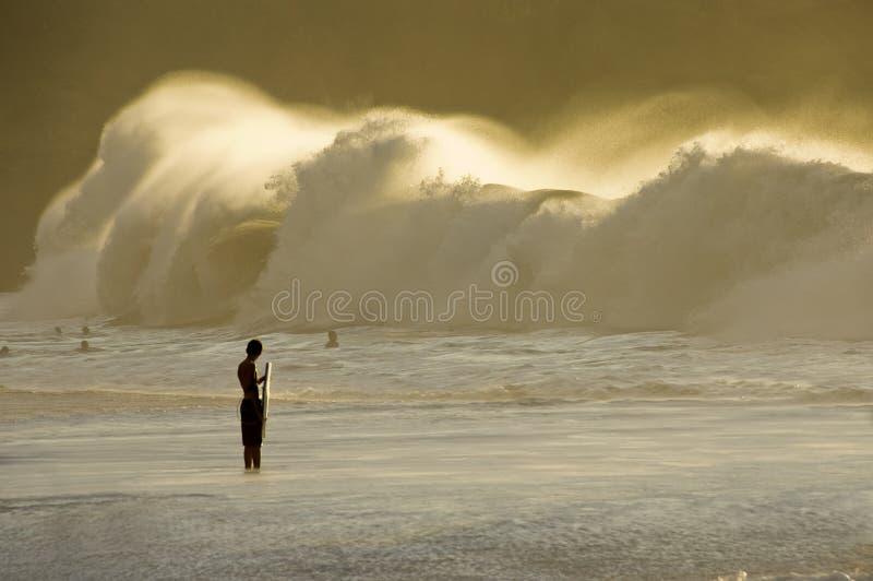 Grande Swell. immagine stock libera da diritti