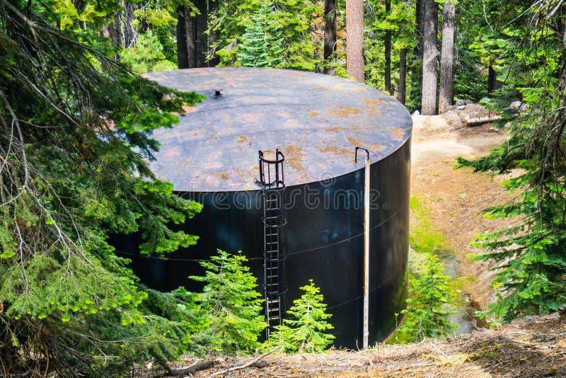 Grande, tanque de água redondo situado em uma floresta sempre-verde perto do ponto da geleira, parque nacional de Yosemite, monta imagem de stock royalty free