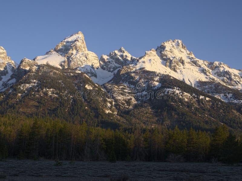 Grande Teton, Mt Owen e montagna di Teewinot immagini stock libere da diritti