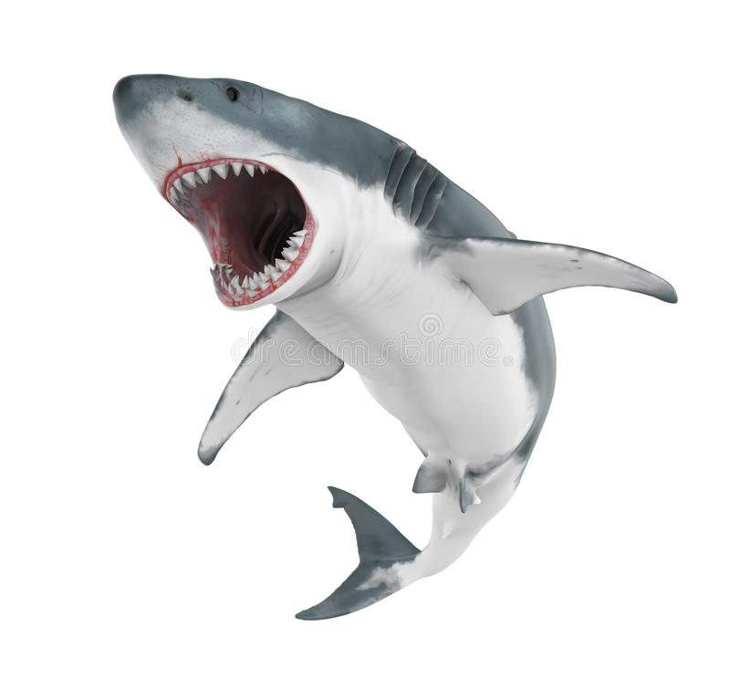 Grande tubarão branco isolado ilustração stock