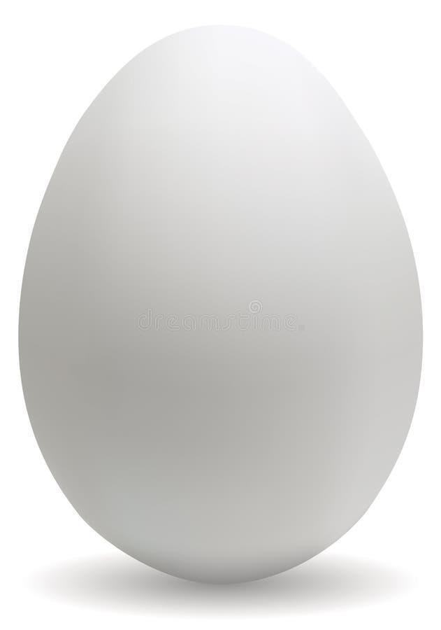 Grande uovo bianco fotografia stock libera da diritti