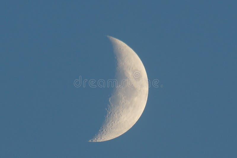 Grande vue en gros plan en hausse blanche de jeune lune photo libre de droits