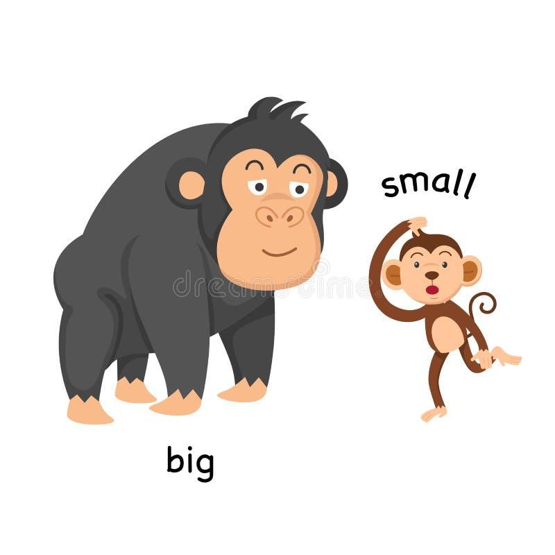 Grande y pequeño opuestos ilustración del vector
