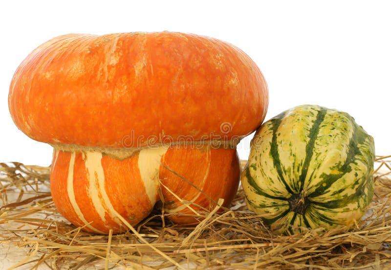 grande zucca arancio per Halloween e un piccolo verde sullo stra immagine stock