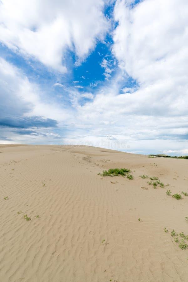 Grandes dunas de arena de Saskatchewan imágenes de archivo libres de regalías