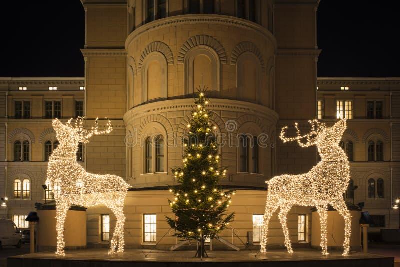 Grandes esculturas dos cervos feitas de luzes conduzidas, da árvore de Natal decorada e da lua de brilho fotos de stock royalty free