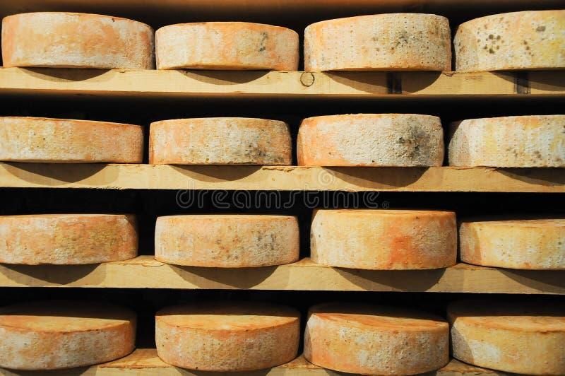 Download Grandes Et Grilles D'origine De Fontina, Montagne Italienne Typique C Image stock - Image du image, bouquet: 76078269