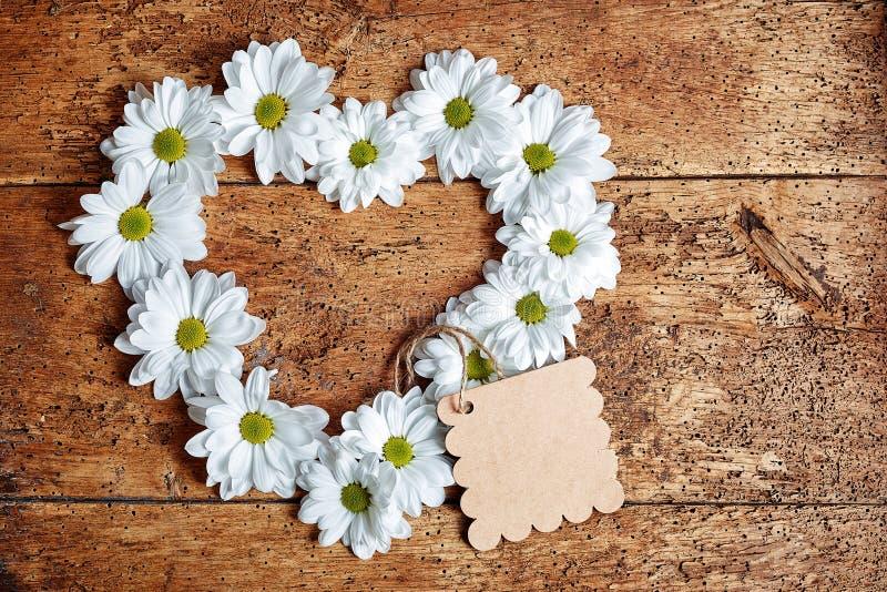Grandes flores da margarida na forma do coração imagem de stock