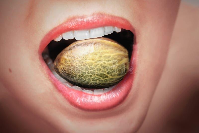 Grandes graines de chanvre dans une bouche de woman's photos stock