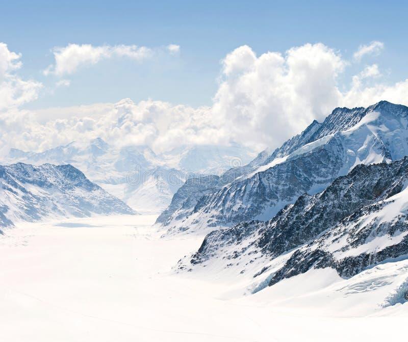 Grandes montan@as Suiza de Jungfrau del glaciar de Aletsch imagen de archivo