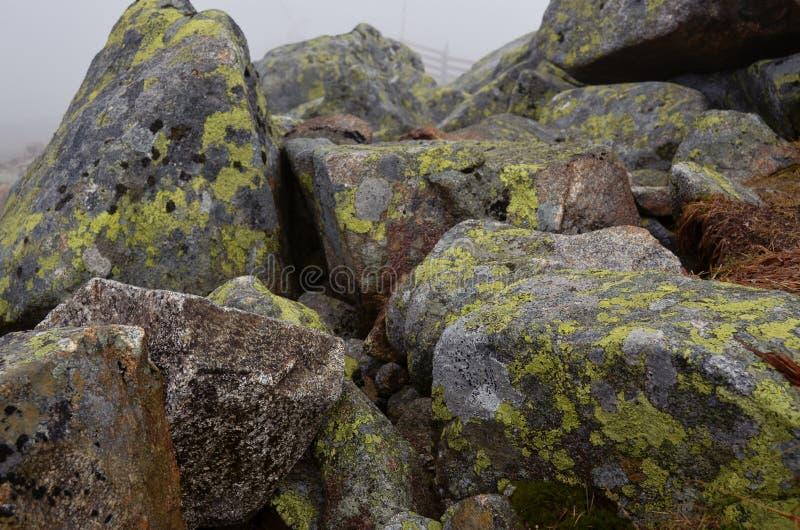 Grandes pedras musgo-cobertas cinzentas nas montanhas enevoadas imagem de stock royalty free