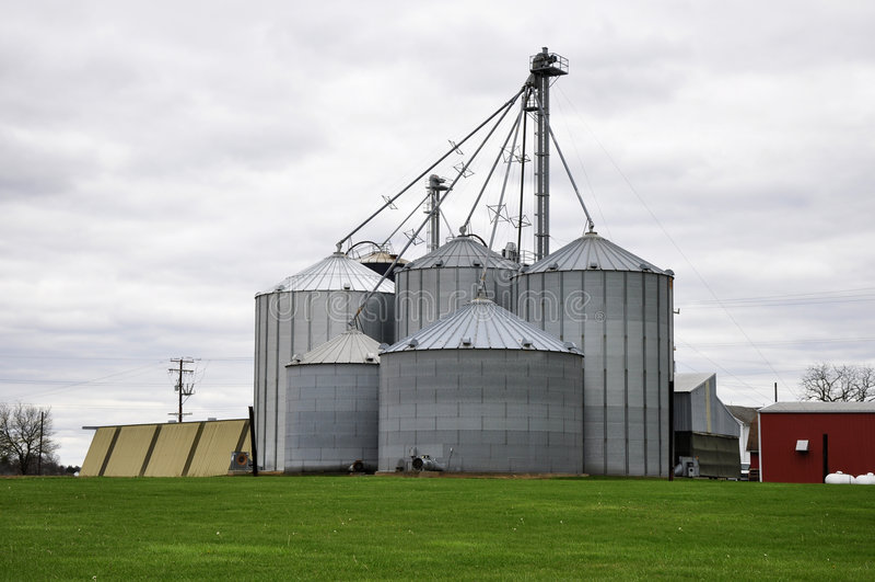Grandes silos de cultivo fotografia de stock royalty free