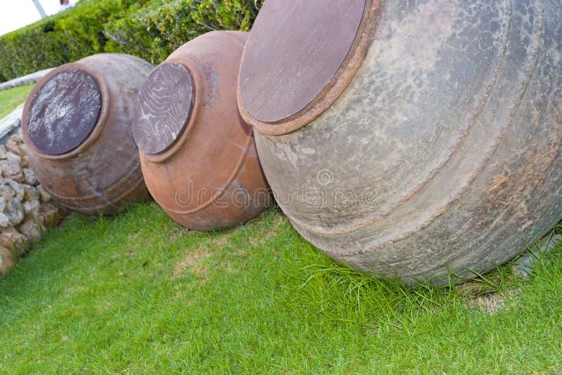 Grandes tambores e oliveiras de azeite imagens de stock royalty free