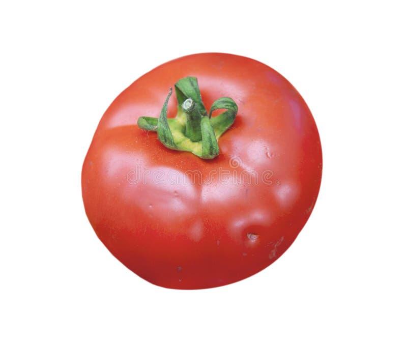Grandes tomates mûres rouges fraîches saines organiques d'isolement sur le blanc image libre de droits