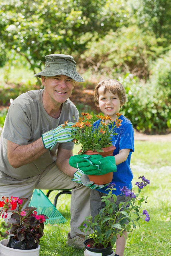 Grandfather and grandson engaged in gardening royalty free stock photography