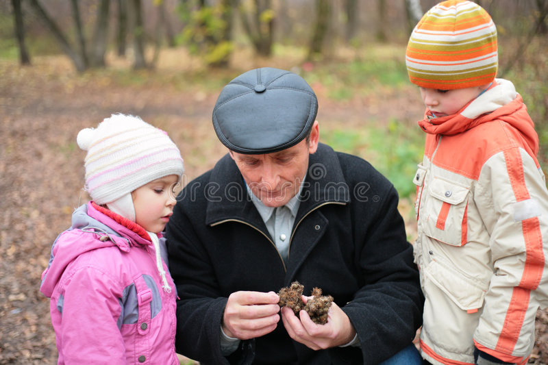Download Grandfather With Grandsons In Wood Stock Image - Image of leaves, holding: 8360835