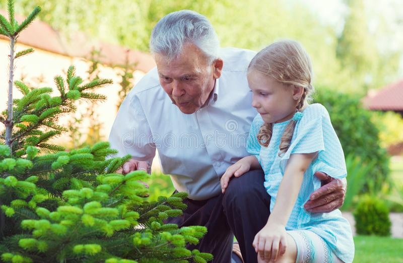 Grandfather with his little blonde grandchild having fun together stock images