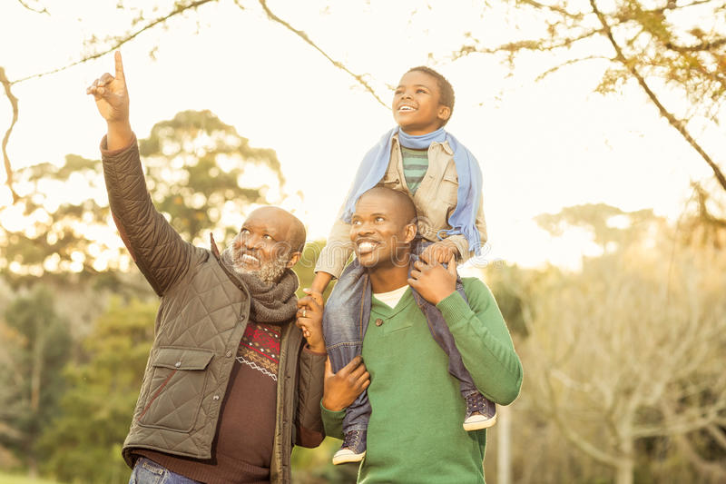 Grandfather pointing something to his son and grandson. In parkland royalty free stock photos