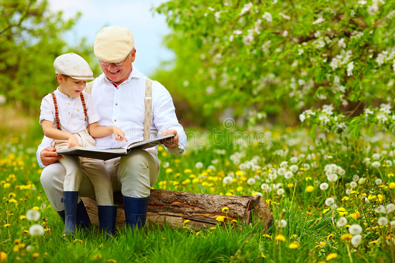 Grandfather reading a book to his grandson, in blooming garden stock image