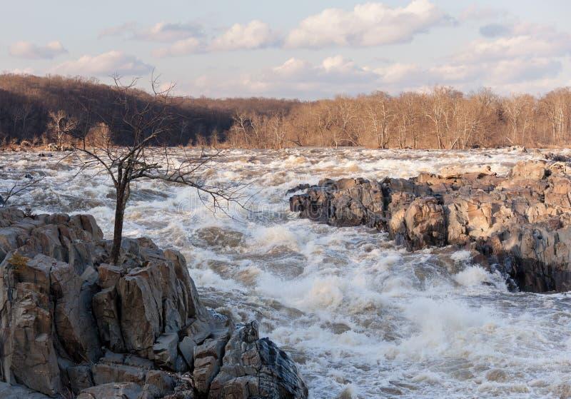 Grandi cadute su Potomac fuori del Washington DC fotografia stock libera da diritti