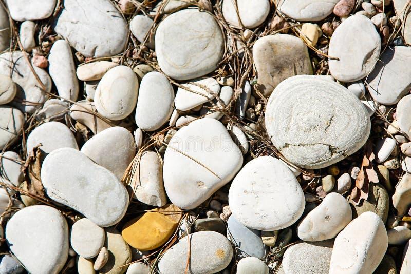 Grandi ciottoli del mare con le piccole particelle di sporcizia sulla superficie fotografie stock libere da diritti