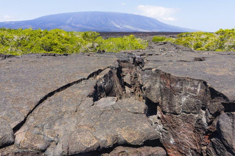 Grandi crepe in lava coagulata immagini stock