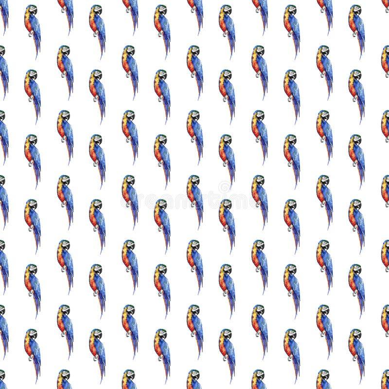 Grandi dei pappagalli tropicali gialli della bella giungla sveglia variopinta luminosa illustrazione diagonale tropicale della ma illustrazione vettoriale