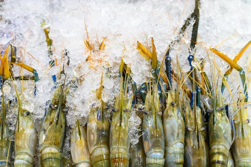 Grandi gamberetti crudi su ghiaccio al mercato fotografia stock libera da diritti