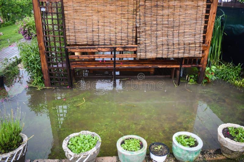 Grandi inondazioni dell'acqua dopo la pioggia massiccia della tempesta Il giardino e le piante sono coperti di acqua sporca Molti fotografia stock