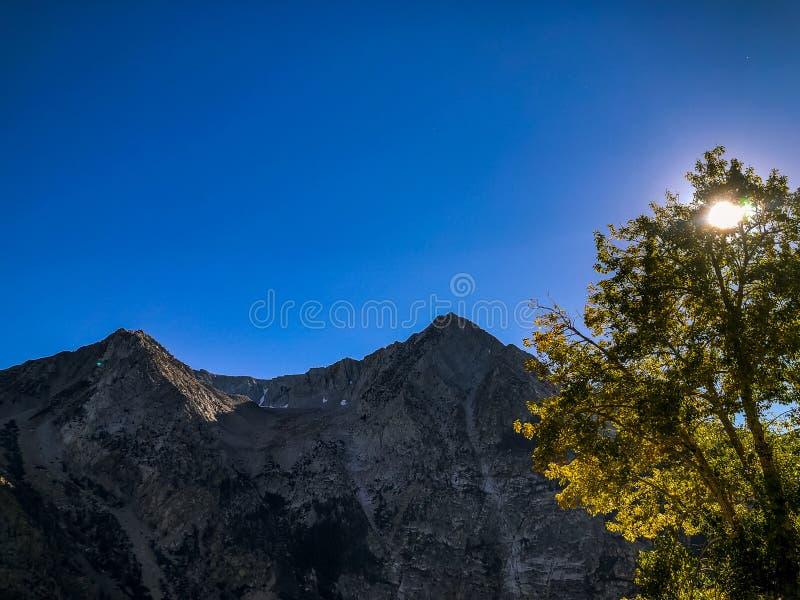 Grandi montagna e Aspen Trees Covering la luce solare fotografia stock