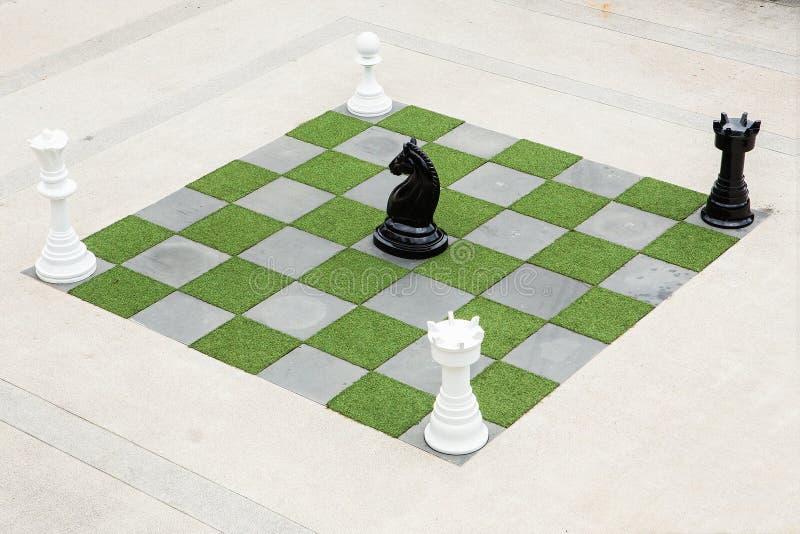 Grandi scacchi del cavallo immagine stock libera da diritti