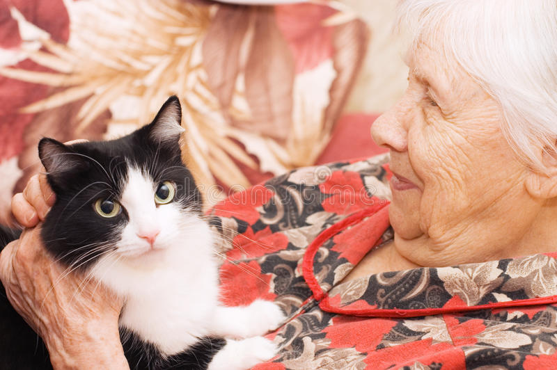 Download The grandmother with a cat stock image. Image of care - 13539017