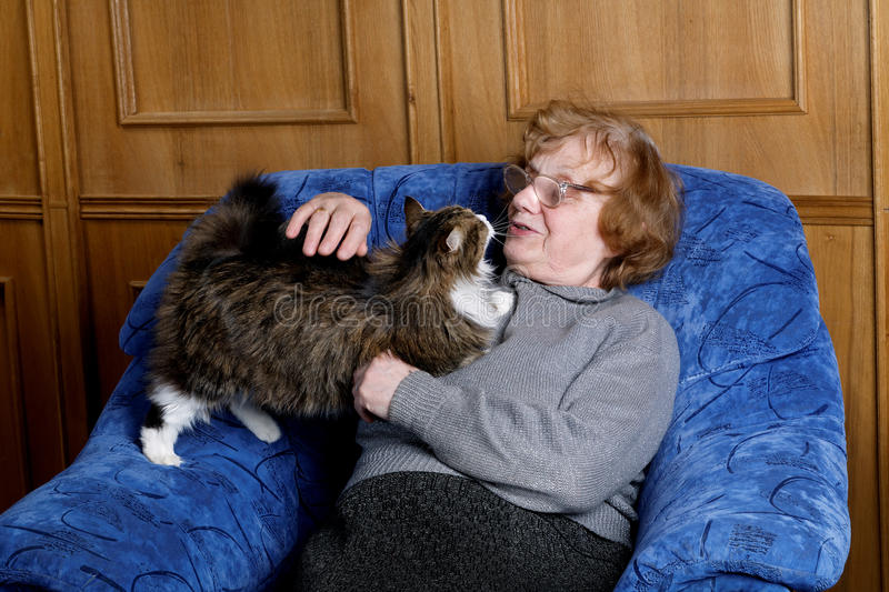 The grandmother with a cat in house stock images