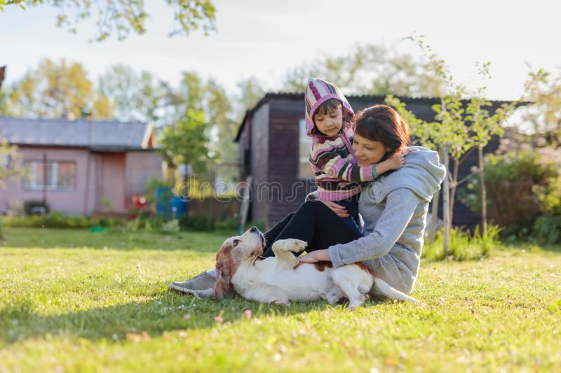 Grandmother with granddaughter and dog playing on the sunbathing lawn. Sunny spring day in the village stock photos