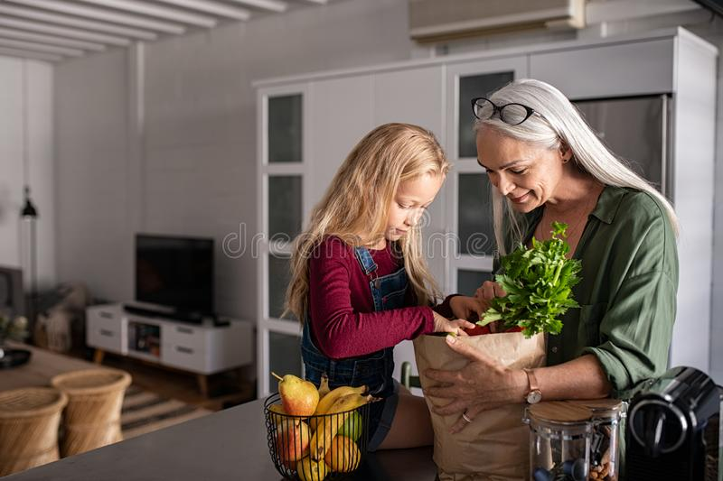 Grandma and girl holding grocery shopping bag royalty free stock photography