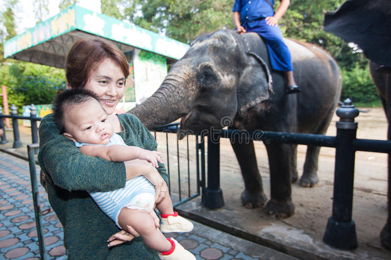 The grandmother holding the grandson. In the zoo, Nakronpathom, Thailand stock photo