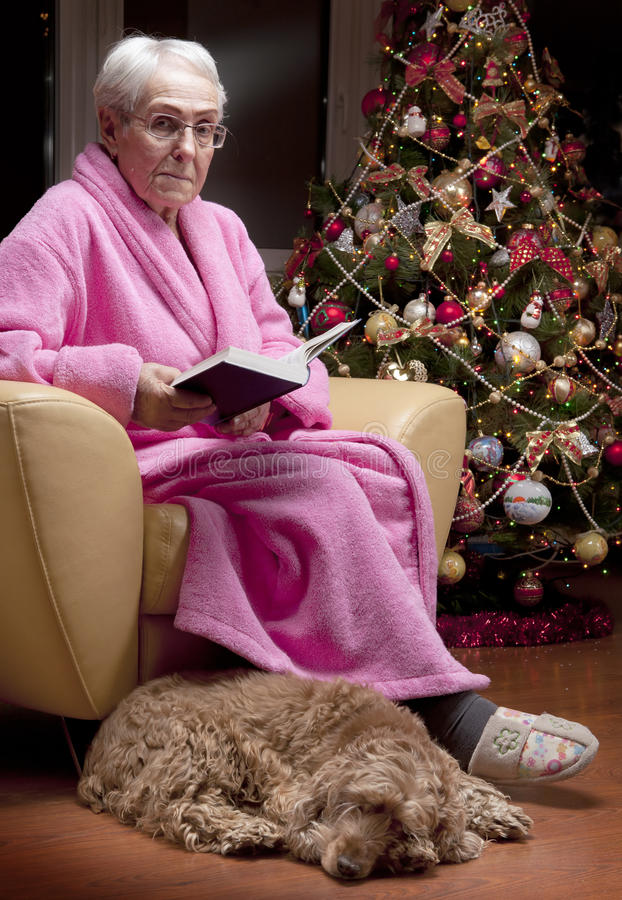 Download Grandmother reading a book stock image. Image of celebration - 17772427