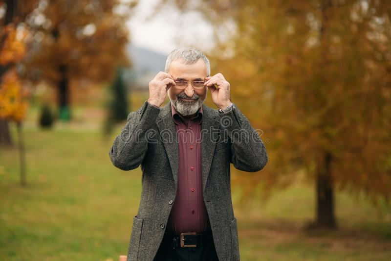Grandpa with a big well-groomed beard wearing a glasses royalty free stock image